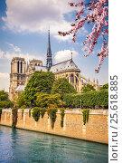 Купить «Notre Dame de Paris», фото № 25618885, снято 24 апреля 2011 г. (c) Sergey Borisov / Фотобанк Лори