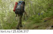 Купить «Backpacker in Norway», видеоролик № 25634317, снято 24 июня 2019 г. (c) Dzmitry Astapkovich / Фотобанк Лори