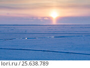 Midnight sun over icefield in late winter, Svalbard, Spitsbergen, Norway, April. Taken on the day of the first midnight sun of the year. Стоковое фото, фотограф Ingo Arndt / Nature Picture Library / Фотобанк Лори