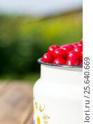 Купить «Аппетитная вишня в металлическом бидончике на деревянном столе», фото № 25640669, снято 4 августа 2013 г. (c) Евгений Ткачёв / Фотобанк Лори