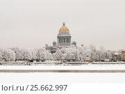 Купить «Зимний Санкт-Петербург. Река Нева», эксклюзивное фото № 25662997, снято 14 января 2010 г. (c) Александр Алексеев / Фотобанк Лори