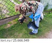 Купить «Девушка гладит собаку», эксклюзивное фото № 25666949, снято 18 августа 2012 г. (c) Алёшина Оксана / Фотобанк Лори