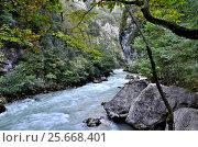 Купить «View of the mountain river Yupshera Abkhazia», фото № 25668401, снято 26 сентября 2014 г. (c) Александр Карпенко / Фотобанк Лори