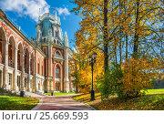 Купить «Москва. Осеннее великолепие Царицына. Autumn splendor of Tsaritsyno», фото № 25669593, снято 1 октября 2016 г. (c) Baturina Yuliya / Фотобанк Лори