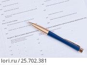 Купить «Заполнение отчетности. Бланк налогой декларации и шариковая ручка», фото № 25702381, снято 21 октября 2016 г. (c) Андрей Липинский / Фотобанк Лори