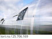 Купить «greenhouse with open window», фото № 25706169, снято 25 августа 2016 г. (c) Syda Productions / Фотобанк Лори