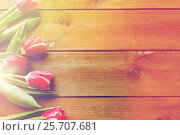 Купить «close up of tulip flowers on wooden table», фото № 25707681, снято 28 января 2016 г. (c) Syda Productions / Фотобанк Лори