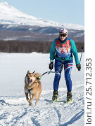 Купить «Соревнования по скиджорингу на фоне гор», фото № 25712353, снято 10 декабря 2016 г. (c) А. А. Пирагис / Фотобанк Лори