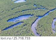 Затопленный лес в пойме реки, фото № 25718733, снято 20 июня 2015 г. (c) Владимир Мельников / Фотобанк Лори