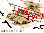 Купить «Лизинг - форма кредитования при приобретении дорогостоящих товаров», фото № 25731317, снято 12 февраля 2016 г. (c) Сергеев Валерий / Фотобанк Лори