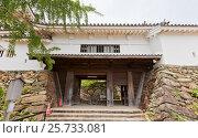 Купить «Ворота Ниномон (Кусуноки) замка Вакаяма, Япония. Реконструкция 1958 г.», фото № 25733081, снято 24 июля 2016 г. (c) Иван Марчук / Фотобанк Лори