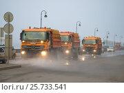 Купить «Автомобили городских коммунальных служб на уборке набережной туманным весенним днем. Санкт-Петербург», фото № 25733541, снято 12 марта 2017 г. (c) Виктор Карасев / Фотобанк Лори