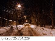 Купить «Зимняя дорога с фонарями», фото № 25734229, снято 2 февраля 2017 г. (c) Mike The / Фотобанк Лори