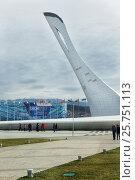 Купить «Сочинская чаша Олимпийского огня на фоне ледового дворца «Айсберг» во время третьих зимних всемирных военных игр в Олимпийском парке с видом на снежные вершины», эксклюзивное фото № 25751113, снято 25 февраля 2017 г. (c) Диана Должикова / Фотобанк Лори