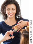Купить «Smiling female hairdresser cutting client hair tips», фото № 25764653, снято 12 июня 2016 г. (c) Людмила Дутко / Фотобанк Лори