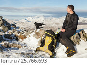 Купить «Hill walker eating lunch on summit cairn in Glen Coe with Raven nearby looking for food scraps. Scotland, UK. November 2015.», фото № 25766693, снято 22 июля 2018 г. (c) Nature Picture Library / Фотобанк Лори
