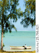Купить «Local fishermen at Baie du Cap, Mauritius, Indian Ocean, Africa», фото № 25766821, снято 6 сентября 2006 г. (c) age Fotostock / Фотобанк Лори