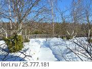 Зимовка яблони на садовом участке. Защита коры от грызунов. Стоковое фото, фотограф Юлия Дьякова / Фотобанк Лори