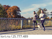 Купить «happy couple with dog running outdoors», фото № 25777489, снято 17 октября 2015 г. (c) Syda Productions / Фотобанк Лори