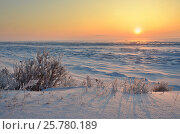 Купить «Заснеженный берег озера Байкал на восходе солнца зимним утром в районе мыса Кадильный», фото № 25780189, снято 7 марта 2017 г. (c) Овчинникова Ирина / Фотобанк Лори