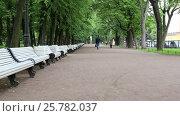 Купить «Санкт-Петербург, люди идут по аллее Александровского сада», видеоролик № 25782037, снято 7 июня 2016 г. (c) Сергей Дубров / Фотобанк Лори