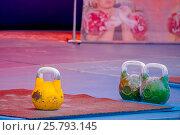 Купить «Гиря», фото № 25793145, снято 30 августа 2014 г. (c) Хайрятдинов Ринат / Фотобанк Лори