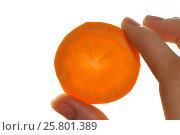 Slice of carrot in hand, close up shoot. Стоковое фото, фотограф Сергей Дорошенко / Фотобанк Лори
