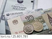 Купить «Сберегательная книжка», фото № 25801781, снято 21 марта 2017 г. (c) Sashenkov89 / Фотобанк Лори
