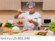 Купить «Young chef working in the kitchen», фото № 25802249, снято 18 ноября 2016 г. (c) Elnur / Фотобанк Лори