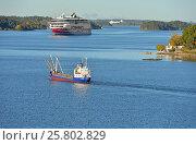 Купить «Грузовое судно Solskar и паром Viking Line в Балтийском море», фото № 25802829, снято 3 октября 2016 г. (c) Валерия Попова / Фотобанк Лори