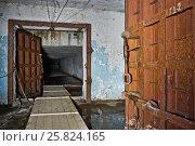 Купить «Старое убежище», фото № 25824165, снято 16 декабря 2015 г. (c) Sashenkov89 / Фотобанк Лори