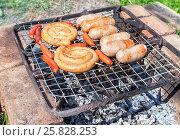 Купить «Аппетитные сочные сардельки, сосиски и колбаски жарятся на самодельном гриле во время пикника на природе в летний солнечный день», фото № 25828253, снято 22 марта 2019 г. (c) FotograFF / Фотобанк Лори