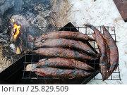 Smoked fish pike in smokehouse. Стоковое фото, фотограф MARINA EVDOKIMOVA / Фотобанк Лори