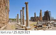 Руины древнего города Перге. Район Аксу, Турция. (2013 год). Стоковое фото, фотограф Bala-Kate / Фотобанк Лори