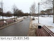 Купить «Park with benches on a winter day», фото № 25831545, снято 19 февраля 2017 г. (c) Григорий Алехин / Фотобанк Лори