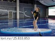 Купить «Девушка на SUP-борде производства компании Тайм Триал, Санкт-Петербург», фото № 25833853, снято 27 марта 2017 г. (c) Stockphoto / Фотобанк Лори