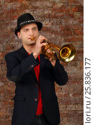 Купить «Young handsome man in suit and hat plays trumpet in studio with brick wall», фото № 25836177, снято 9 февраля 2016 г. (c) Losevsky Pavel / Фотобанк Лори