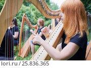 Купить «Musicians play harps outdoors in park», фото № 25836365, снято 19 июня 2016 г. (c) Losevsky Pavel / Фотобанк Лори
