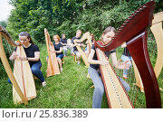 Купить «Ensemble of seven musicians play harps outdoors», фото № 25836389, снято 19 июня 2016 г. (c) Losevsky Pavel / Фотобанк Лори