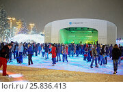 Купить «MOSCOW, RUSSIA - JAN 24, 2015: People at scating rink under snowfall in evening time at VDNKh. Ice skating rink at VDNKh is the largest in Europe - an area more than 20000 square meters.», фото № 25836413, снято 24 января 2015 г. (c) Losevsky Pavel / Фотобанк Лори