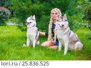 Купить «Young blond woman with two Husky dogs sits on grass in summer park», фото № 25836525, снято 23 июля 2015 г. (c) Losevsky Pavel / Фотобанк Лори
