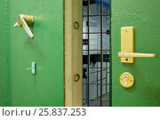 Купить «Slightly open heavy door with lever locks, latticed door and room with metal boxes behind them», фото № 25837253, снято 29 апреля 2015 г. (c) Losevsky Pavel / Фотобанк Лори