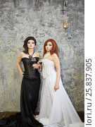 Купить «Red-haired woman in white dress and dark-haired woman in black dress stand with glasses of wine in room with ragged walls», фото № 25837905, снято 12 февраля 2015 г. (c) Losevsky Pavel / Фотобанк Лори