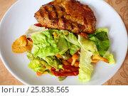 Купить «Grilled meat, cut into slices and garnish - vegetables, herbs and mushrooms», фото № 25838565, снято 5 апреля 2016 г. (c) Losevsky Pavel / Фотобанк Лори