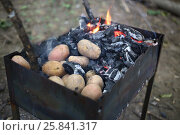 Купить «Closeup of brazier coal and baked potatoes», фото № 25841317, снято 17 июля 2015 г. (c) Losevsky Pavel / Фотобанк Лори