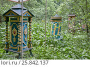 Купить «MOSCOW, RUSSIA - JUN 18, 2016: Wooden beehives in Izmailovskaya apiary among plants on summer day. Izmailovskaya experimental apiary has century and a half history.», фото № 25842137, снято 18 июня 2016 г. (c) Losevsky Pavel / Фотобанк Лори