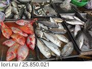 Fresh fish on market counter. Стоковое фото, фотограф Михаил Коханчиков / Фотобанк Лори