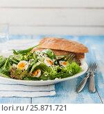 Купить «Quail Egg Salad with Curry Yogurt Dressing», фото № 25871721, снято 14 марта 2017 г. (c) Татьяна Ворона / Фотобанк Лори
