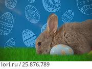 Купить «Composite image of bunny with floral pattern easter egg», фото № 25876789, снято 9 декабря 2018 г. (c) Wavebreak Media / Фотобанк Лори