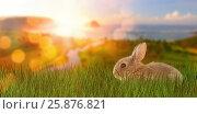 Купить «Composite image of close-up of bunny», фото № 25876821, снято 9 декабря 2018 г. (c) Wavebreak Media / Фотобанк Лори